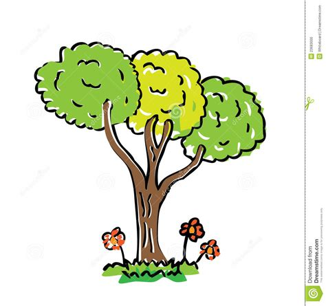 cartoon drawing tree  color stock illustration