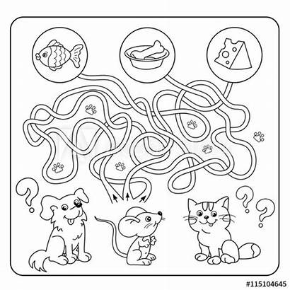 Maze Coloring Labyrinth Puzzle Animals Matching Children