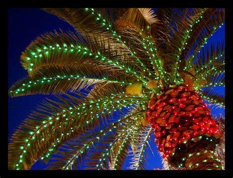 best christmas lights in florida naples fl best christmas lights display victoria park