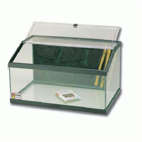 1000 id 233 es sur le th 232 me terrarium pour tortue sur enclos pour tortue tortue d