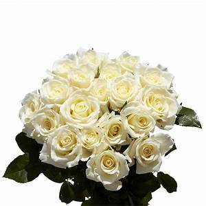 Globalrose Fresh White Roses (100 Stems)-100-white-roses ...