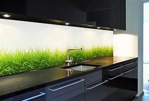 Motive Für Küchenrückwand : k chenr ckwand aus glas motiv gras endlos verlegbar keine folie ebay ~ Sanjose-hotels-ca.com Haus und Dekorationen
