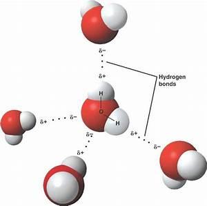 Hydrogen bonding in water is it a covalent bond or ionic bond