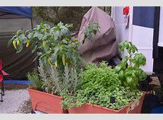 Patio Garden Kit Raised Garden Beds – Green Gnome Gardens