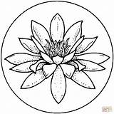 Lily Coloring Pages sketch template
