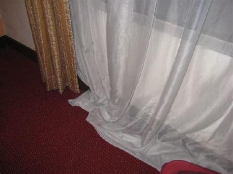 bed bugs picture of klana resort seremban nilai