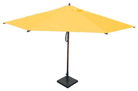 13 mahogany umbrella sunflower yellow mediterranean