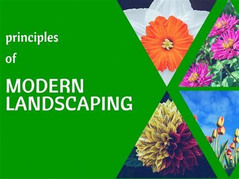 principles of modern design principles of modern landscaping design