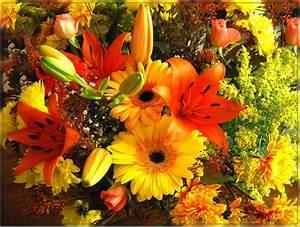 Bouquet De Fleurs : photos insectes et fleurs montages animationsbouquet de fleurs photos insectes et fleurs ~ Teatrodelosmanantiales.com Idées de Décoration