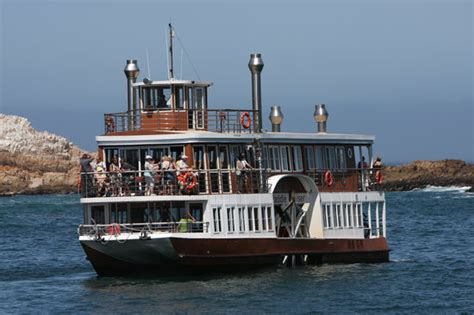 Boat Trip Knysna by Knysna Paddle Cruiser Day Cruises South Africa Top Tips