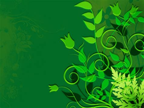 Abstract Green Leaf Wallpaper by Green Leaves 3d And Cg Abstract Background Wallpapers