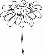 Daisy Clip Flower Coloring Clipart Outline Drawing Cliparts Line Sweetclipart Sweet Getdrawings Library sketch template