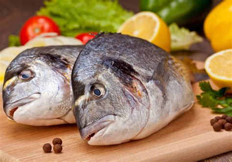 cooking fish the art of cooking fish a pinch of this a dash of that