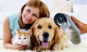 Aspirateur Poil De Chien : aspirateur poil chien et chat groupon shopping ~ Medecine-chirurgie-esthetiques.com Avis de Voitures