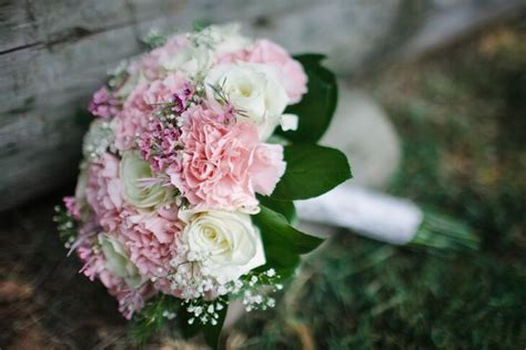 pink carnation  babys breath bridal bouquet