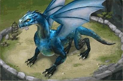 Dragon Fantasy Animated Dragons Gifs Clip Fantasia