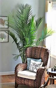 Plante De Salon : la d coration d 39 int rieur avec de grandes plantes d 39 int rieur ~ Teatrodelosmanantiales.com Idées de Décoration