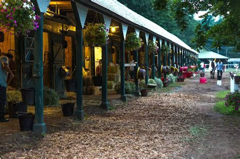 plant shed nyc 8 best tack and tack rooms images on