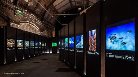 exhibition   wildlife photographer   year
