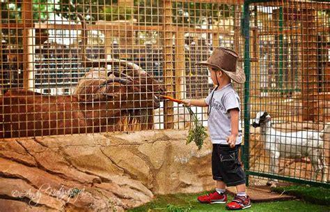 dubai zoo picnic safari park emirates spots abu dhabi desert