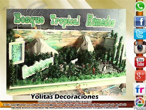 Yolitas Decoraciones: Maqueta de Bosque Tropical Humedo