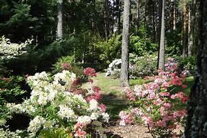 Aktuelle Blumen Im April : farbenpracht und dufterlebnis im natur blumen erlebnis park ~ Markanthonyermac.com Haus und Dekorationen