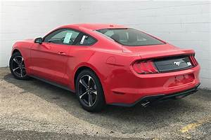 New 2019 Ford Mustang EcoBoost 2D Coupe in Morton #174409 | Mike Murphy Ford