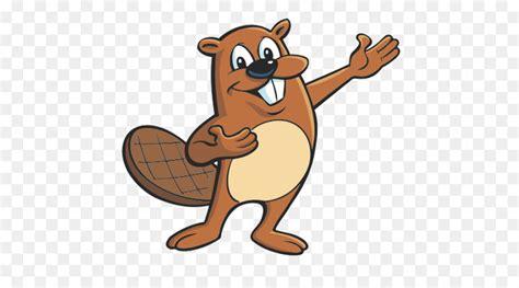 beaver cartoon drawing clip art beaver png