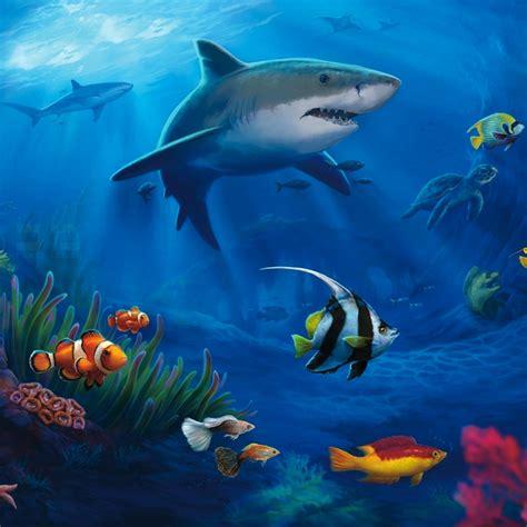 Live Animal Wallpaper For Pc - marine aquarium desktop wallpaper impremedia net