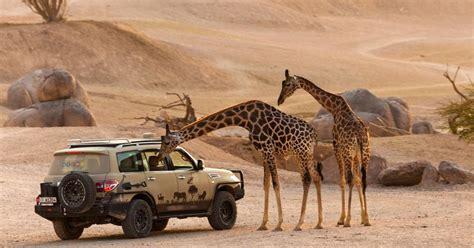 Al Ain Safari   Al Ain Zoo
