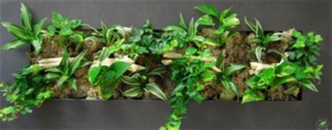 cadre vegetal mural conditions d utilisation cadre vegetal