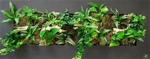 Tableau Végétal Mural : tableau v g tal jardiland sofag ~ Premium-room.com Idées de Décoration
