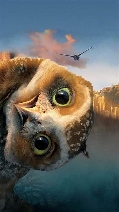 Funny Owl Wallpapers Htc