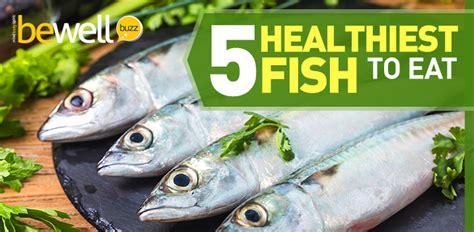 healthiest fish  eat     avoid bewellbuzz
