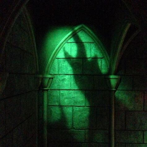 maleficent shadow  sleeping beauty castle walk