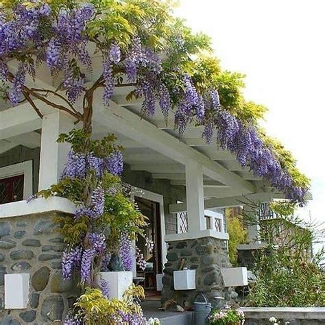 model rumah gaya eropa modern tercantik mewah rumah