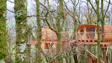 Living-room Treehouses-updated Prices & Cottage