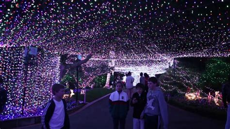 outdoor christmas strobe lights canberra christmas lights couple upset their neighbours