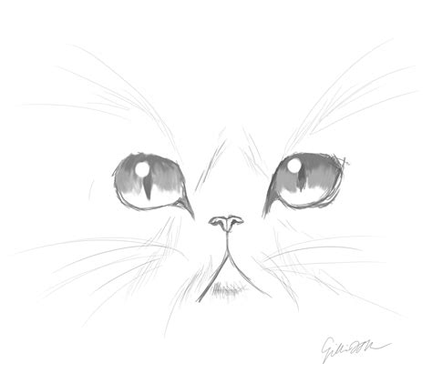 images  cute cat face sketches art
