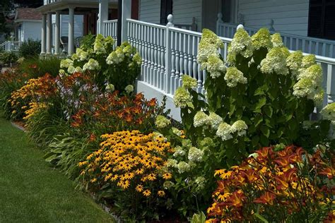 plants for front garden ideas