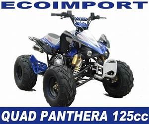 Quad 125cc Panthera : quad panthera 125cc pas cher ~ Melissatoandfro.com Idées de Décoration