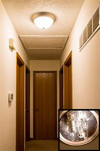 Led flush mount ceiling lighting traditional hall st