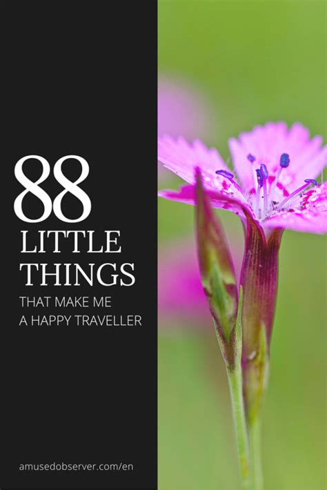 88 Little Things That Make Me A Happy Traveller Amused