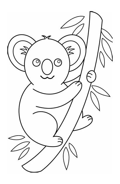 Koala Clipart Clip Coloring Outline Bear Drawing