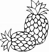 Pineapple Coloring Pages Clipart Outline Fresh Sugarloaf Colouring Printable Drawing Sheet Slice Clipartmag Whitesbelfast Tropical Save Credit Colornimbus sketch template