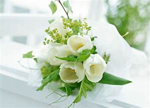 Wallpaper Elegant Flowers