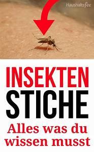Bienen Vertreiben Essig : 38 best abfluss reinigen images on pinterest ~ Whattoseeinmadrid.com Haus und Dekorationen