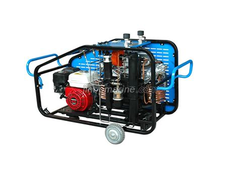 diving breathing high pressure air compressor lyw300 buy diving air compressor from china
