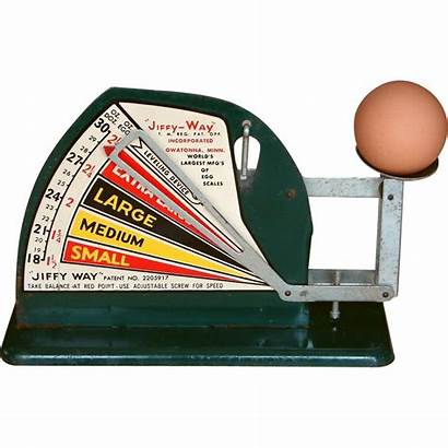 Egg Scale Jiffy Way Weight Farm Authentic