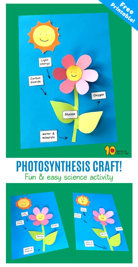 photosynthesis craft  kids  minutes  quality time